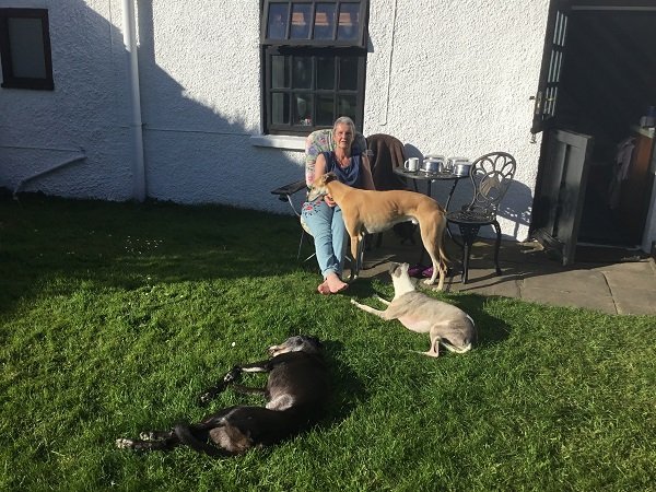 Phyl-and-her-3-dogs-relaxing-in-The-Cottage-garden-Deanwood-LR